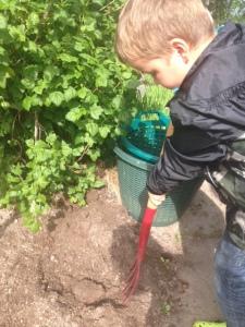 Min femårige son gräver med stor entusiasm.