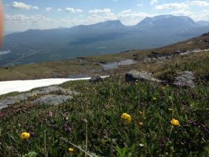 Abisko - vy mot Lapporten från Nuolja