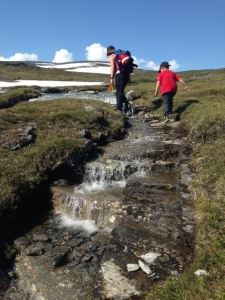 I bäcken Ridonjira uppe på Nuolja är det lätt att hitta stenar med granater i.