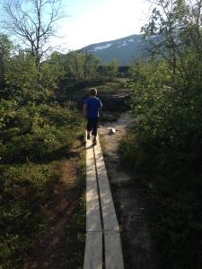 - Jag älskar att springa på spångar! sa min son och rusade iväg...