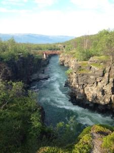 Abiskojokkens canyon - ett måste för alla som är i Abisko.