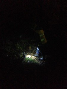 Vara i skogen när det är mörkt är väldigt spännande!