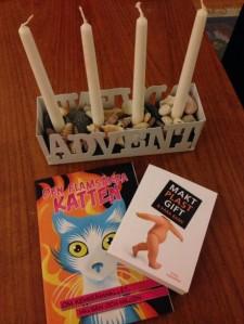 Sommarminnen i adventsljusstaken, bra alternativ till mossa. Böckerna rekommenderar jag varmt - Makt plast gift & våra barn av Ethel Forsberg och Den flamsäkra katten, om kemisamhället, hälsan och miljön utgiven av Naturskyddsföreningen.